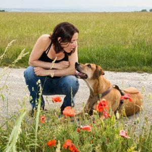 Mythen Mensch-Hund-Bindung