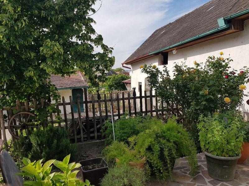 Sommerpause am Lamahof